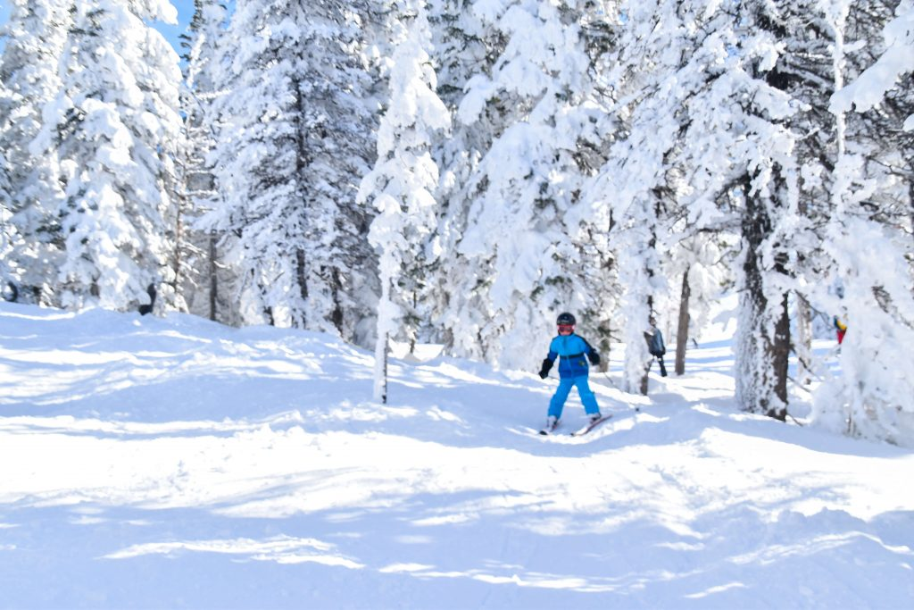 boy skiing powder