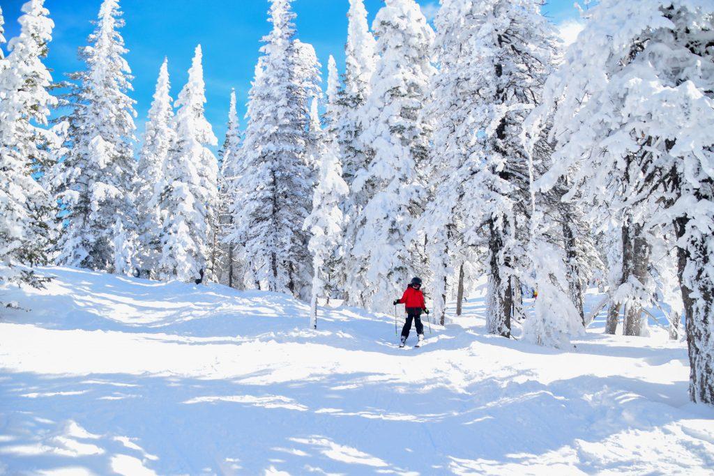 kids skiing grand targhee