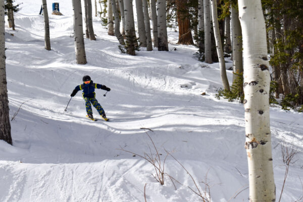 know limits on skis